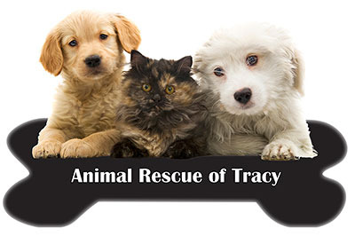 Animal Rescue of Tracy on DonatecarUSA.com
