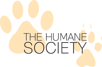 http://www.donatecarusa.com/wp-content/themes/donatecarUSA/assets/img/logos/BroomeCountyHumaneSociety.png