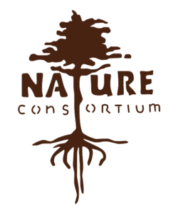 /wp-content/themes/donatecarUSA/assets/img/logos/NatureConsortium.png