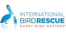 International Bird Rescue Research Center on DonatecarUSA.com