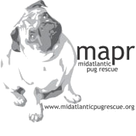 North Carolina Car Donations - Mid Atlantic Pug Rescue - DonatecarUSA.com