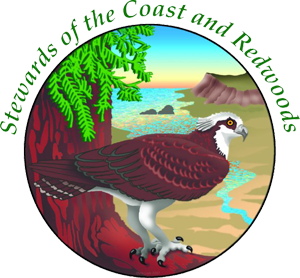 Stewards of the Coast & Redwoods on DonatecarUSA.com