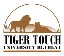 Tiger Touch on DonatecarUSA.com