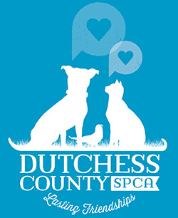 Donate a car to Dutchess County SPCA