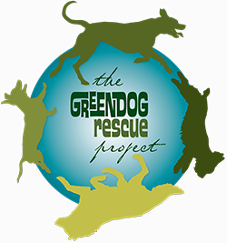 Green Dog Rescue Project on DonatecarUSA.com
