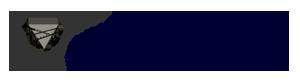 Charity - Illinois Council of the Blind - DonatecarUSA.com