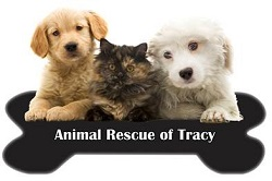 Find a Charity - Animal Rescue of Tracy - DonatecarUSA.com