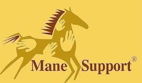 Charity - Mane Support - DonatecarUSA.com