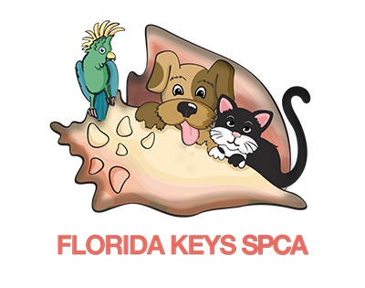 Florida Car Donations - Florida Keys SPCA - DonatecarUSA.com