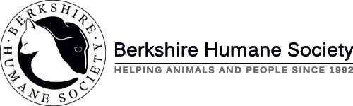 Massachusetts Car Donations - Berkshire Humane Society - DonatecarUSA.com