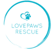 Maryland Car Donations - LOVEPAWS - DonatecarUSA.com